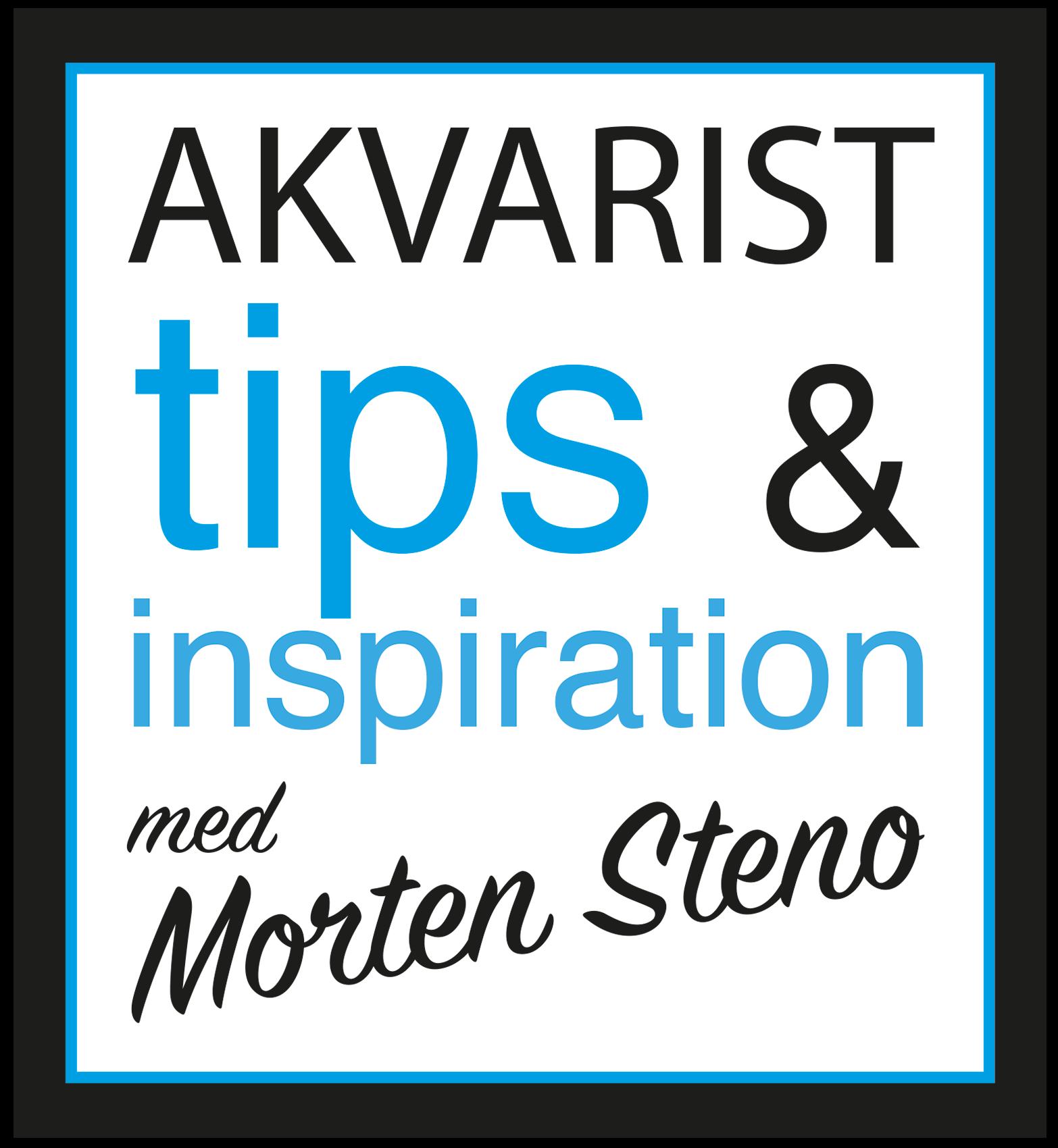 Akvarist tips og inspiration med Morten Steno - logo 1700 px logo